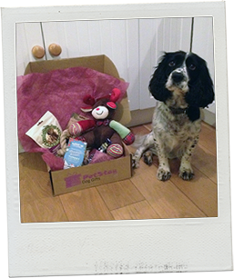 Jess with her PetStay Gift Box