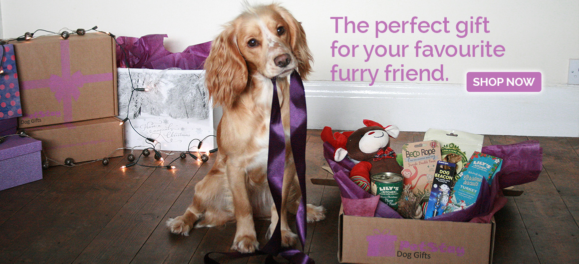 PetStay Dog Gifts