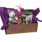 Medium Dog Gift Box