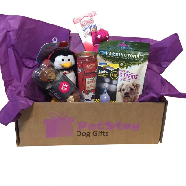 petstay-dog-gifts-small-dog-box